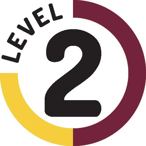 Career Mentoring Certification- ADVANCED